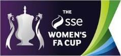 womens fa cup land